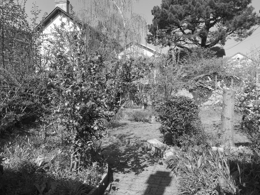 Jardin des Plantes – Maison au fort potentiel – SOUS OFFRE